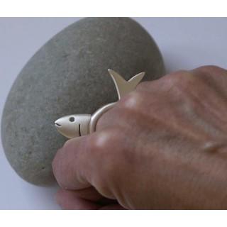 anillo-peixe