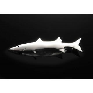 broche-barracuda