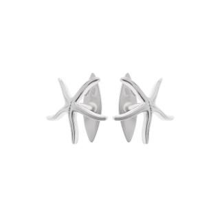 gemelos-estrella-marina
